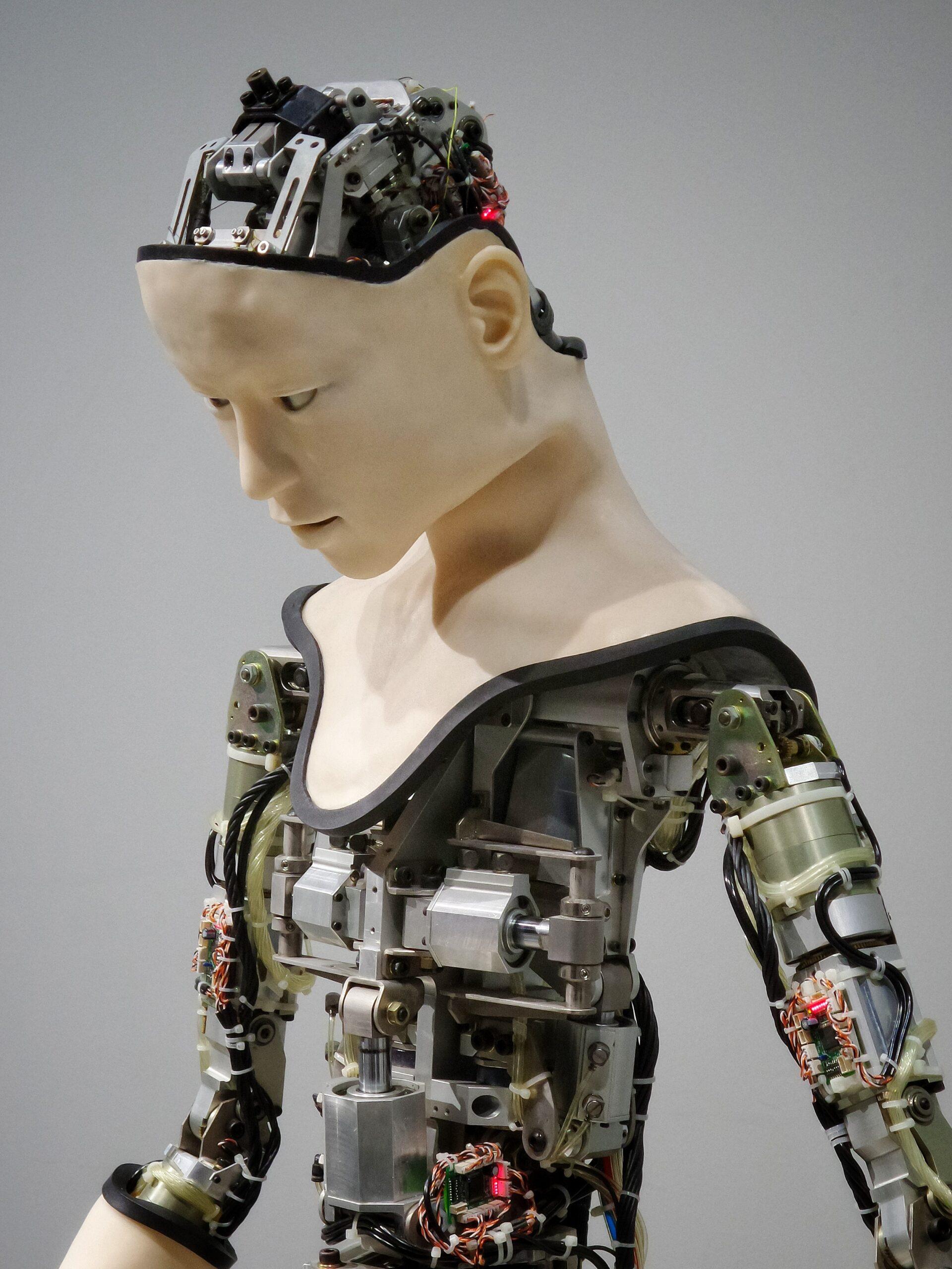 Training Your Affiliate Marketing AI